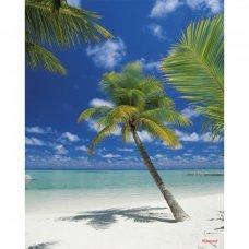 Φωτοταπετσαρία Τοίχου Komar 4-883 Ari Atoll (1.84 x2.54 m)